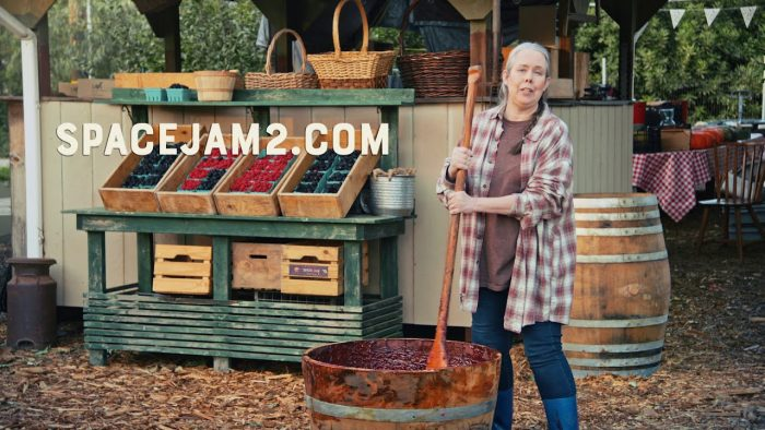 Space Jam 2 domain, Epic Fail or Massive Marketing Opportunity with Creative Internet Trolls